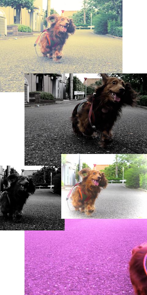 CreativeShot01.jpg